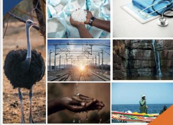 Brochure sectorielle : Sénégal, terre d'investissement